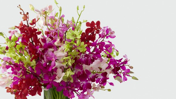 Luminous Luxury Orchid Bouquet - Image 3 Of 3