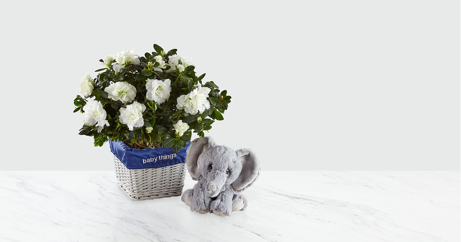 Baby Things Azalea with Plush Precious Moments® Elephant - Boy - Image 1 Of 2