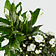 The Best is Yet to Come Blooming Basket - Thumbnail 2 Of 2