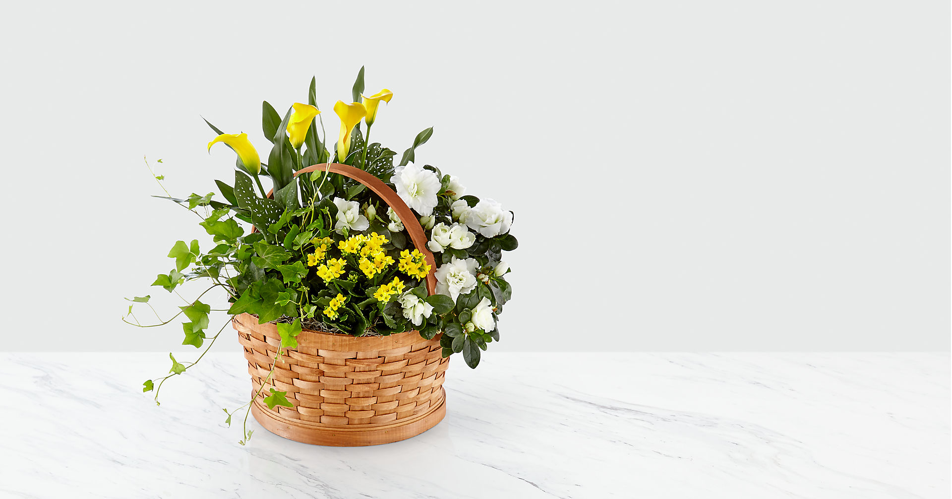 Sunny Side of the Street Blooming Basket - Image 1 Of 2