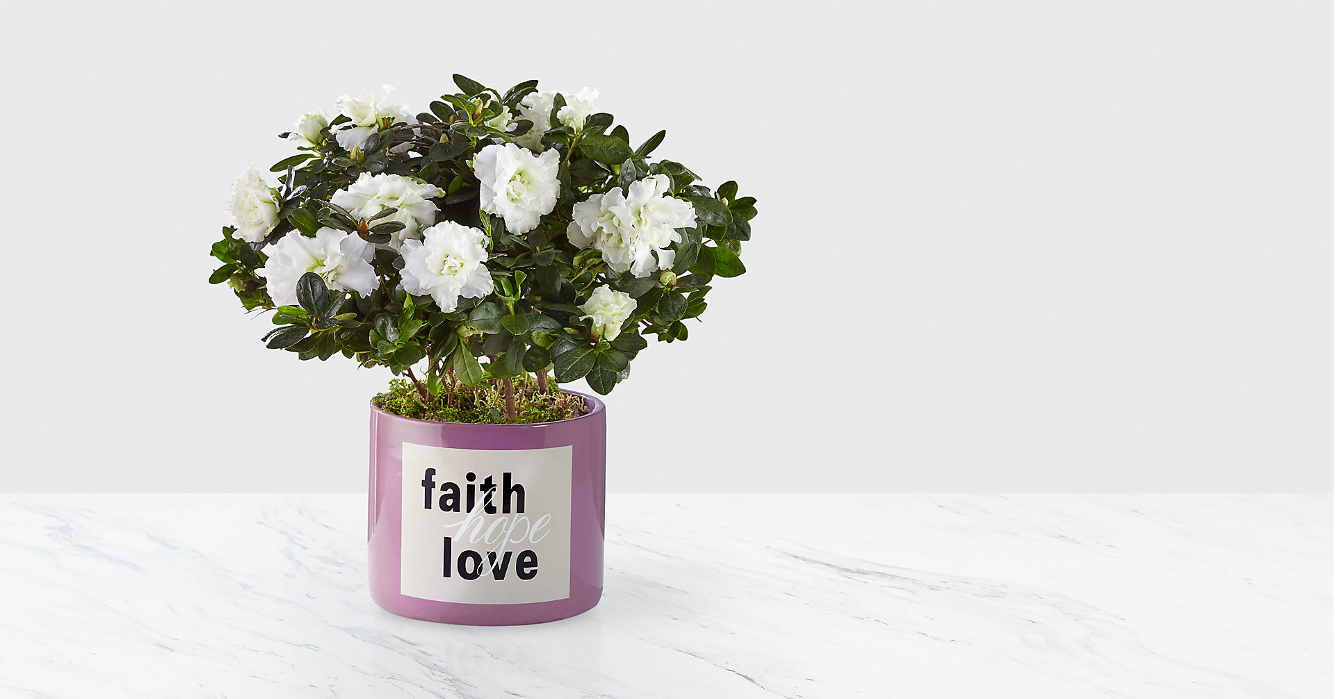 Faith Hope Love Azalea - Image 1 Of 2