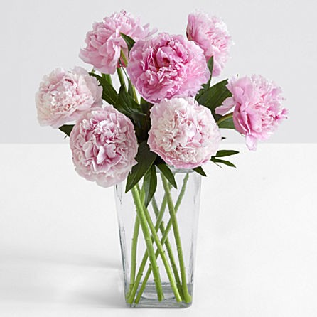 Assorted Pink Peonies