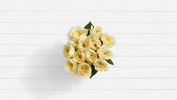 Santorini Summer - 12 Stems of White Garden Roses