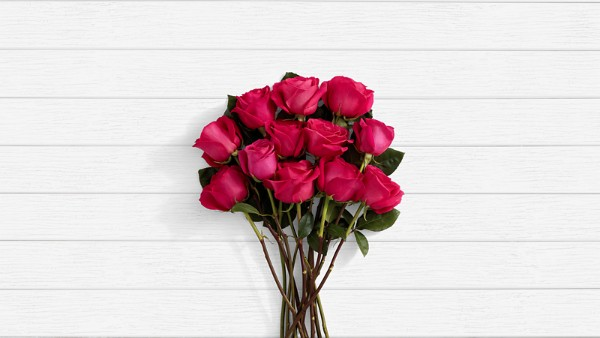 Sangria - 12 Stems of Hot Pink Roses