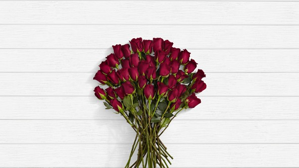 Merlot - 40 Stems of Dark Red Long Stemmed Roses