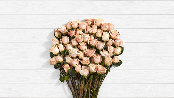 Champagne - 50 Stems of Beige Long Stemmed Roses