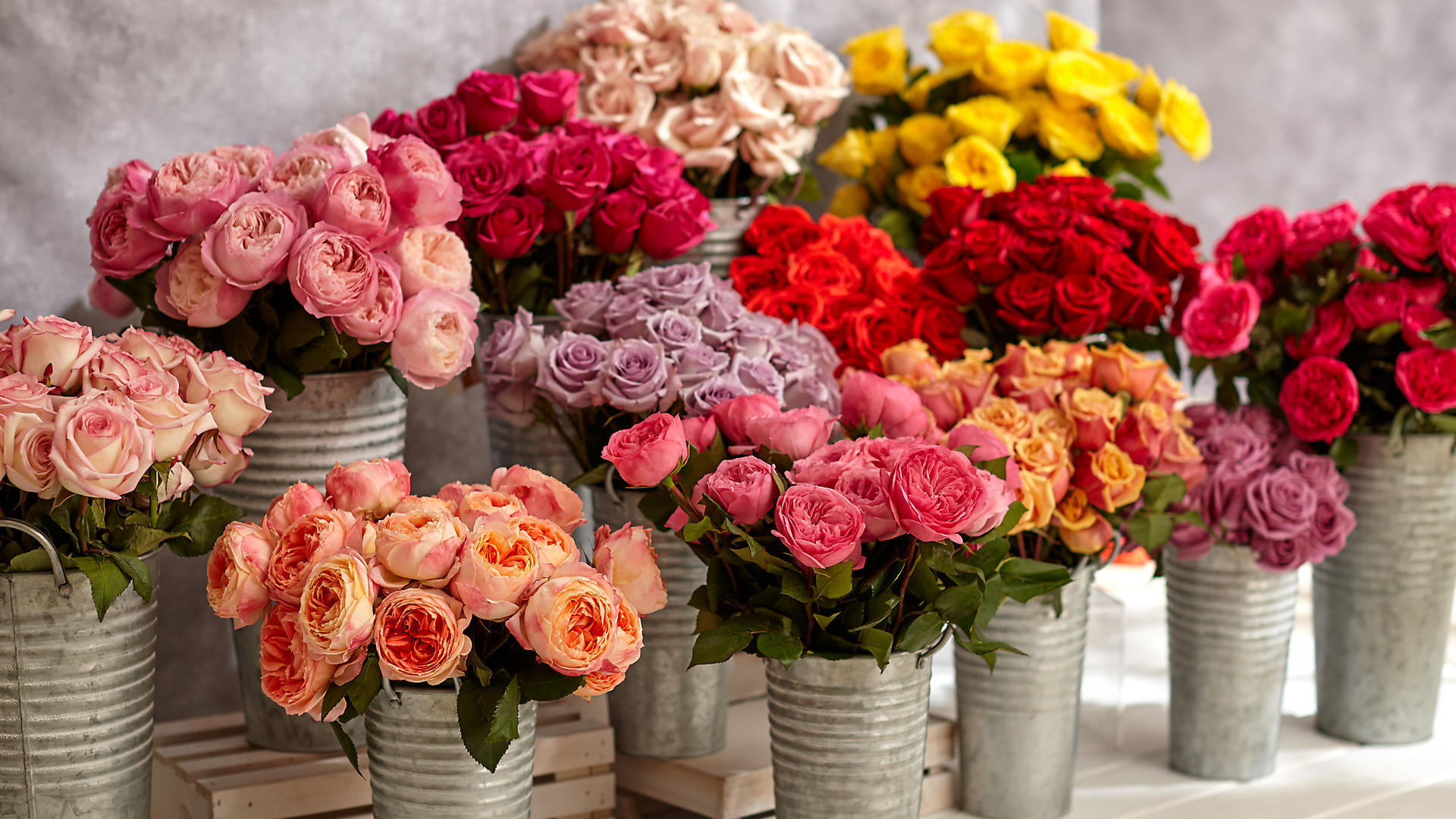 Flowers Online Flower Delivery Send Flowers Proflowers