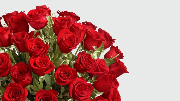 Fate Luxury Rose Bouquet - 48 Stems of 24-inch Premium Long-Stemmed Roses - Thumbnail 3 Of 3