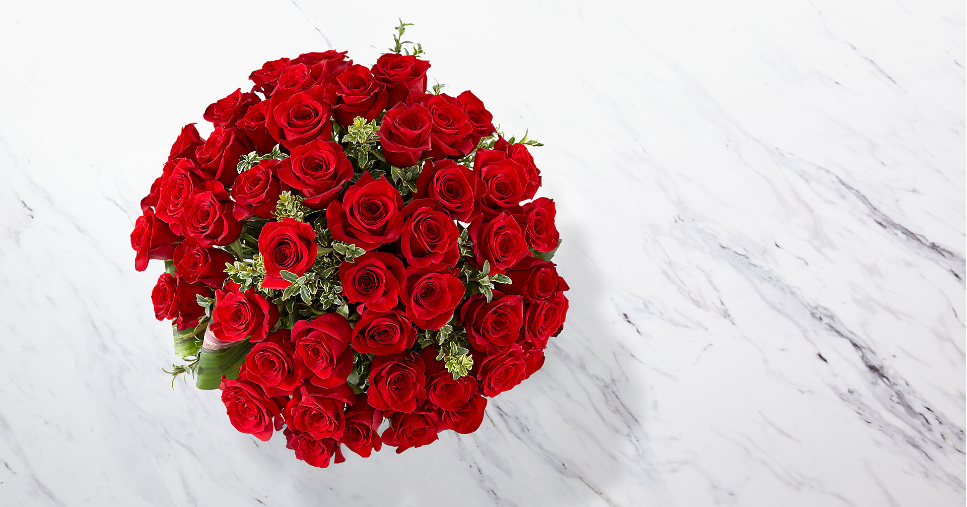 Fate Luxury Rose Bouquet - 48 Stems of 24-inch Premium Long-Stemmed Roses - Image 2 Of 5