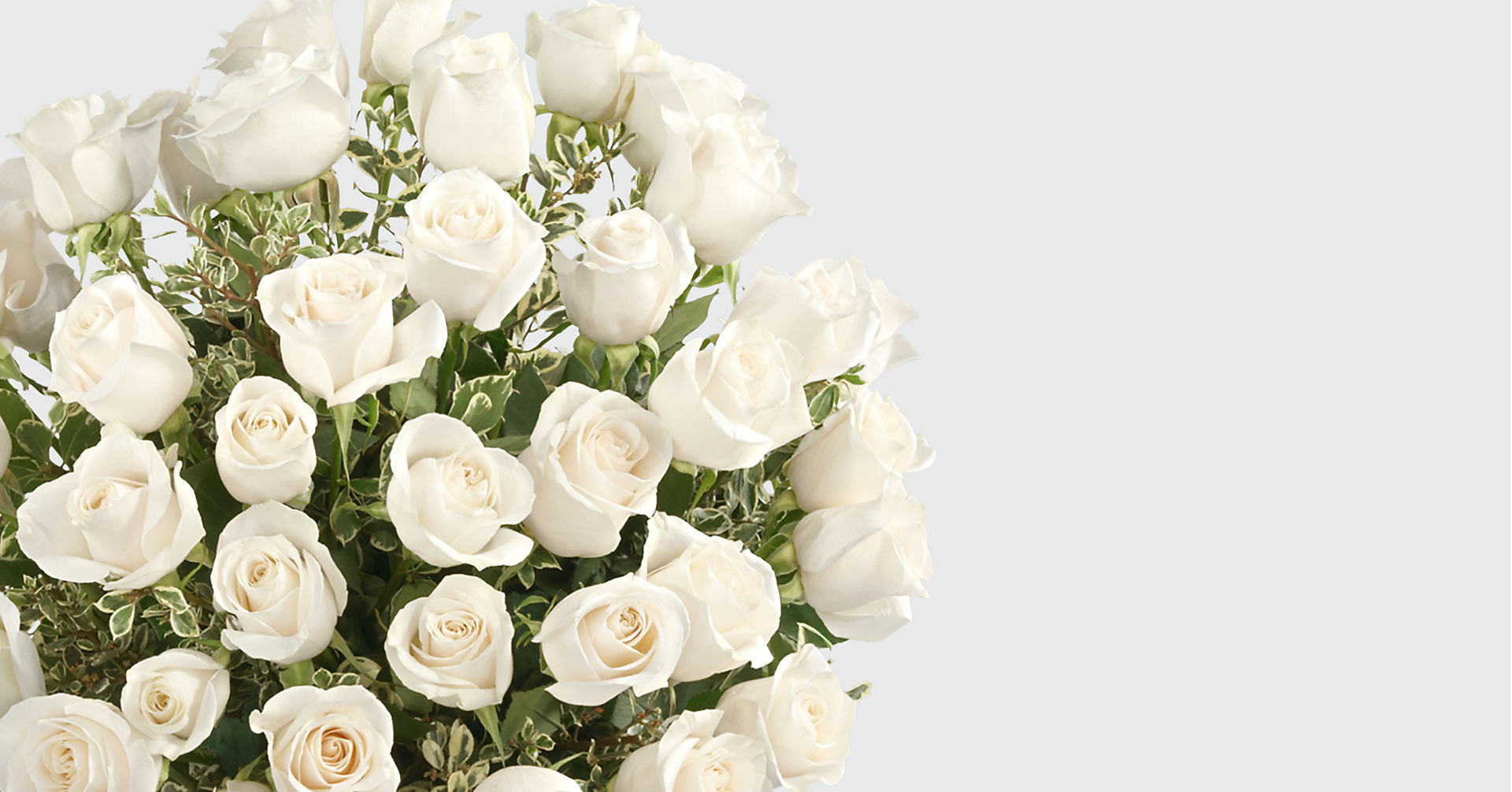 Clarity Luxury Rose Bouquet - 24-inch Premium Long-Stemmed Roses - Image 3 Of 4