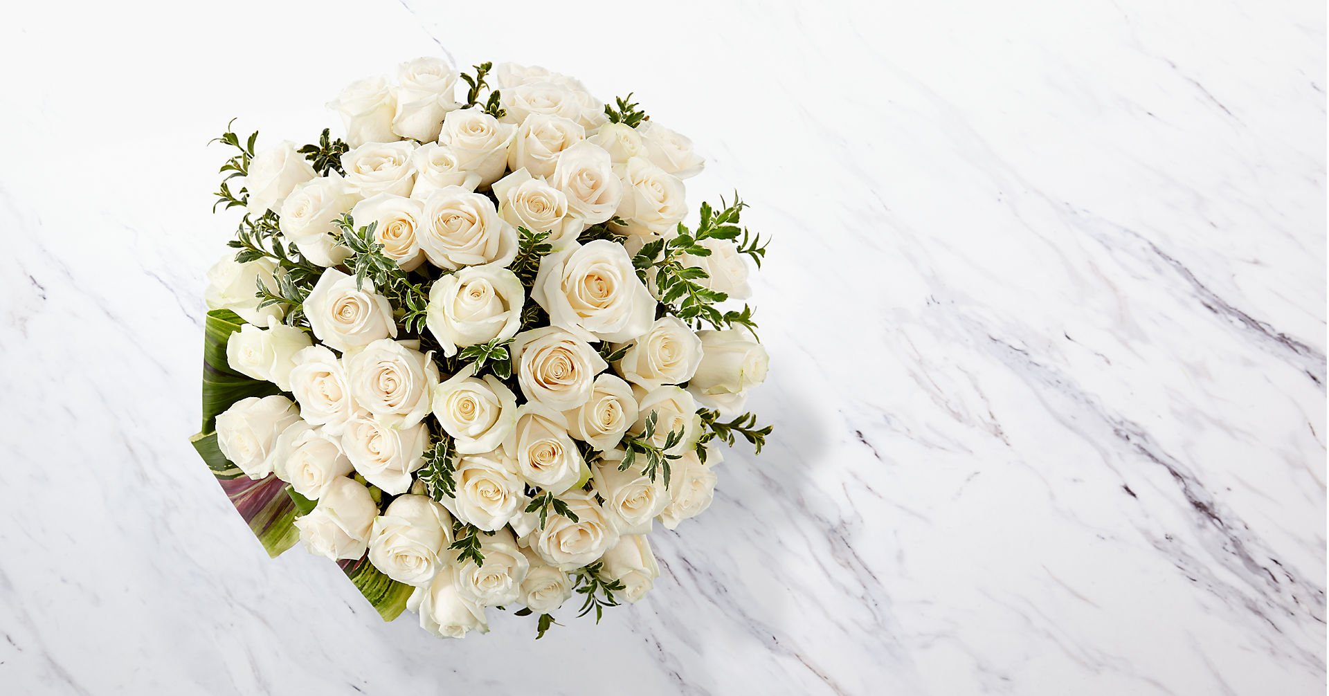 Clarity Luxury Rose Bouquet - 24-inch Premium Long-Stemmed Roses - Image 2 Of 4