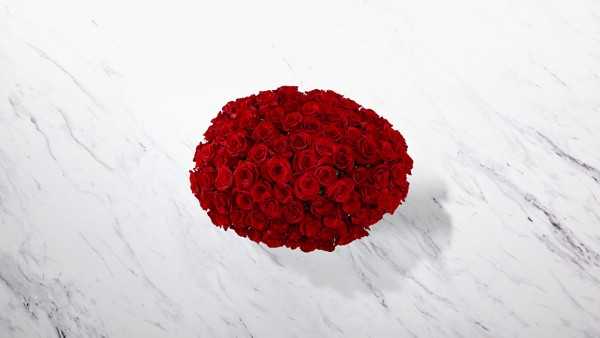 Breathless Luxury Rose Bouquet 24-inch Premium Long-Stemmed Roses - Thumbnail 2 Of 3