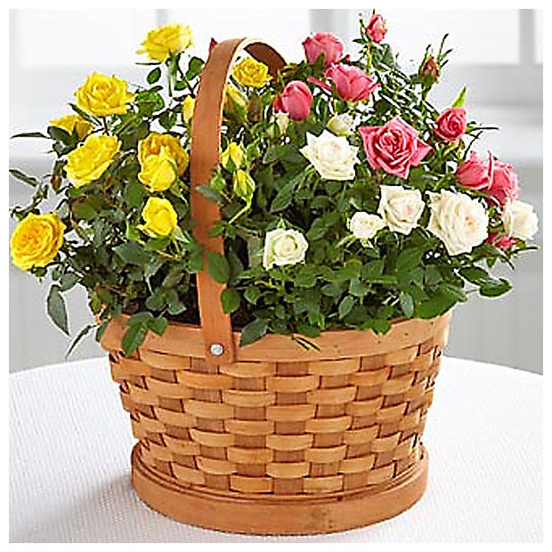 The FTD® Final Rest Rose Garden Basket by Better Homes and Gardens™