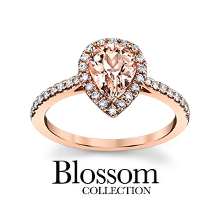 Blossom Collection