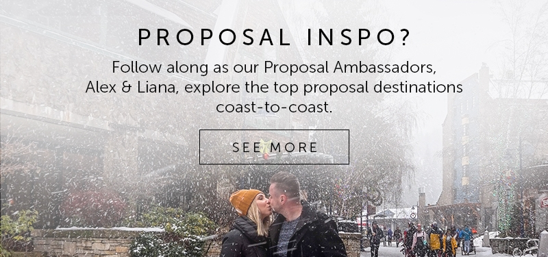 Proposal Ambassador And Find Best Place to Propose