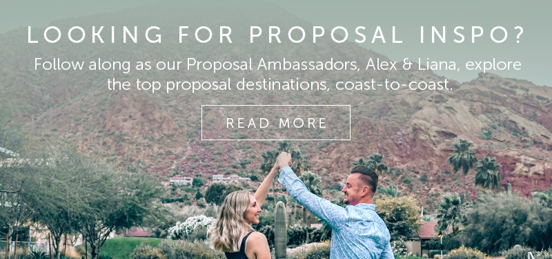 Proposal Ambassador