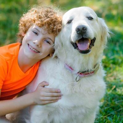 Higiene y Baños para Perros