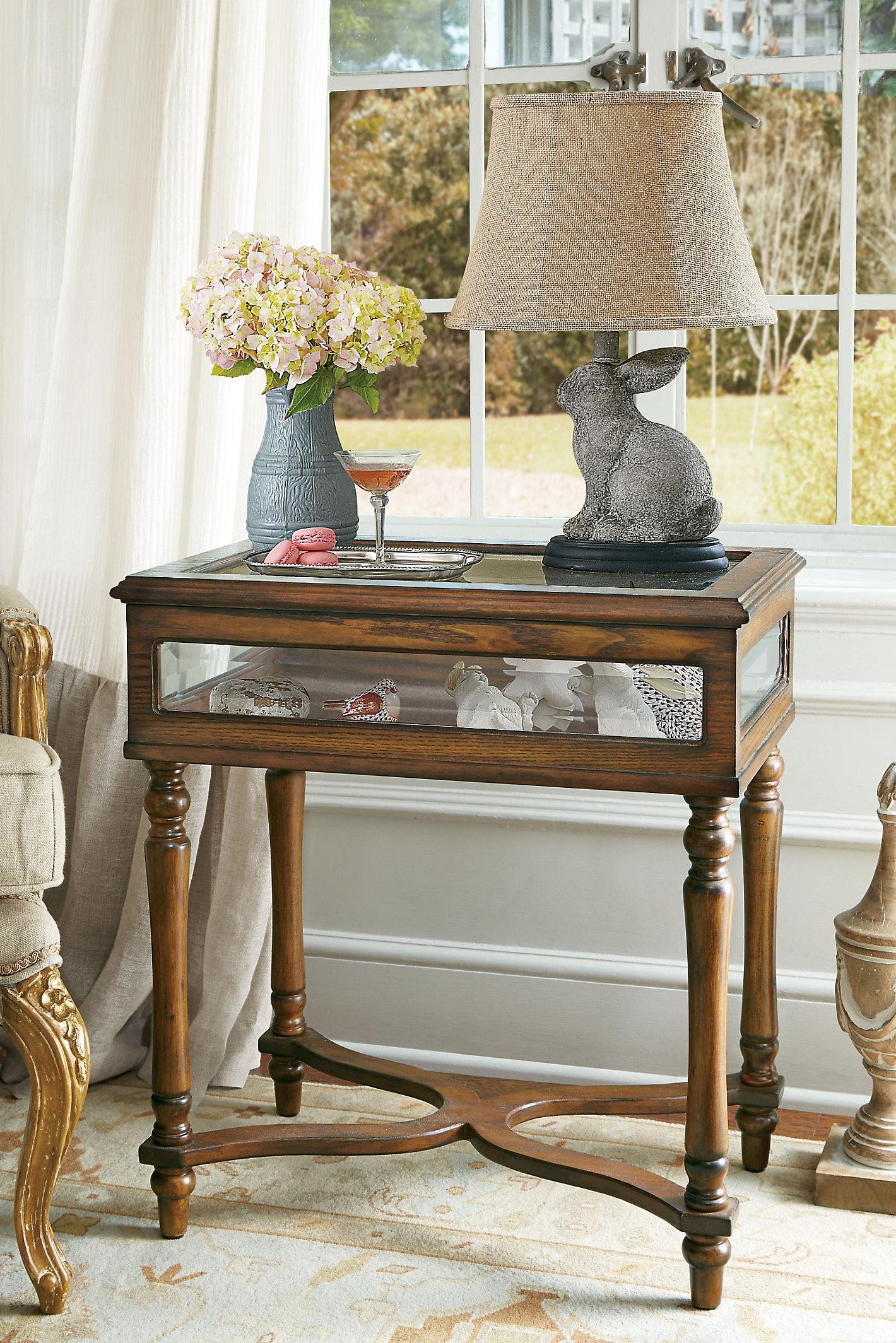 Collector's Vitrine Table