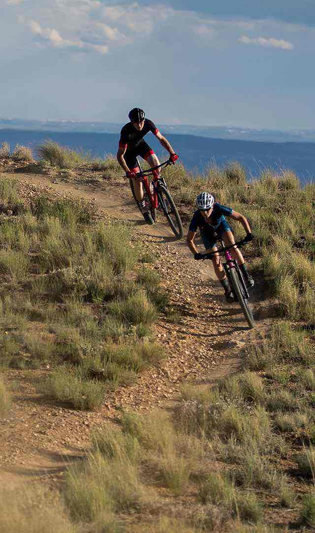 BikesFamilyMountainChiselLink