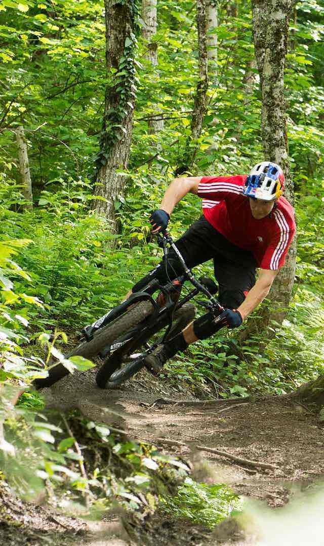 BikesFamilyMountainFuseLink