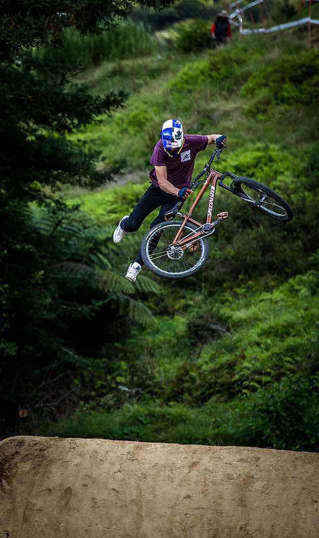 BikesFamilyMountainPSeriesLink