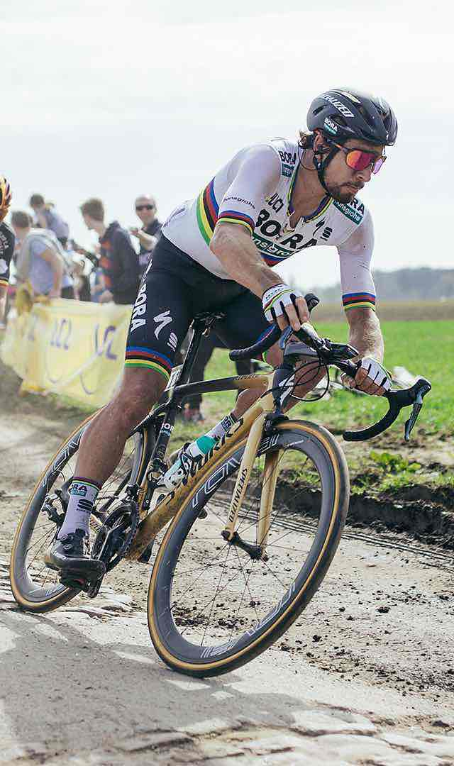 BikesFamilyRoadRoubaixLink