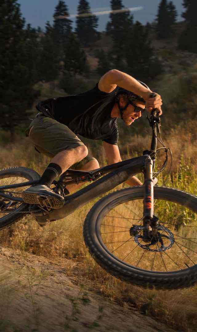 BikesFamilyMountainTurboLevoFSRLink