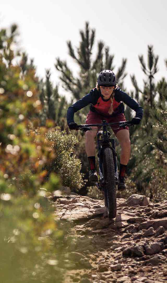 BikesFamilyElectricTurboLevoHardtailLink