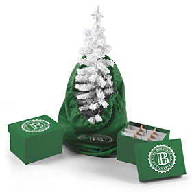 Christmas Tree And Accessories Storage Set