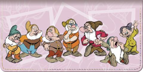 The Seven Dwarfs Checkbook Cover