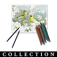 Hautman Brothers Artistic Escapes Coloring Kit Collection