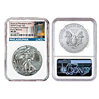 The Emergency 2020 Silver Eagle Coin