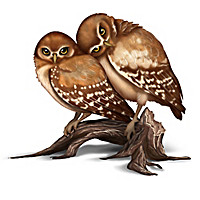 Laura Crawford Williams Owl Figurines with Free Photo Cards