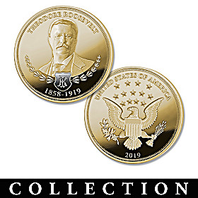 Theodore Roosevelt 100th Anniversary Proof Coin Collection