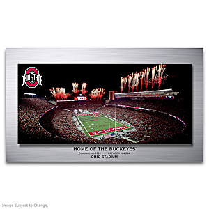 Ohio State Buckeyes Gallery Metal Print Wall Decor