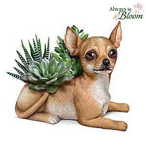 Chihuahua Planter With Always In Bloom Succulents