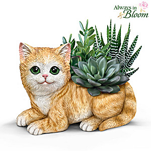 Cat Planter With Always In Bloom Succulents