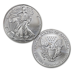 The First Burnished Finish 2006 American Silver Eagle Coin