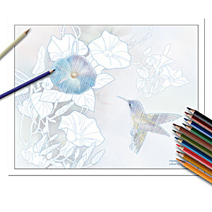 Lena Liu Adult Coloring Kit Collection With Colored Pencils