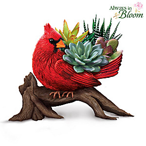 Succulent And Songbird Sculpture Collection