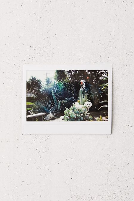 Photo Printers + Camera Film | Urban Outfitters