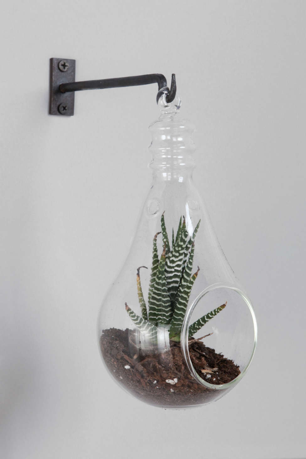 Light Bulb Hanging Terrarium Urban Outfitters