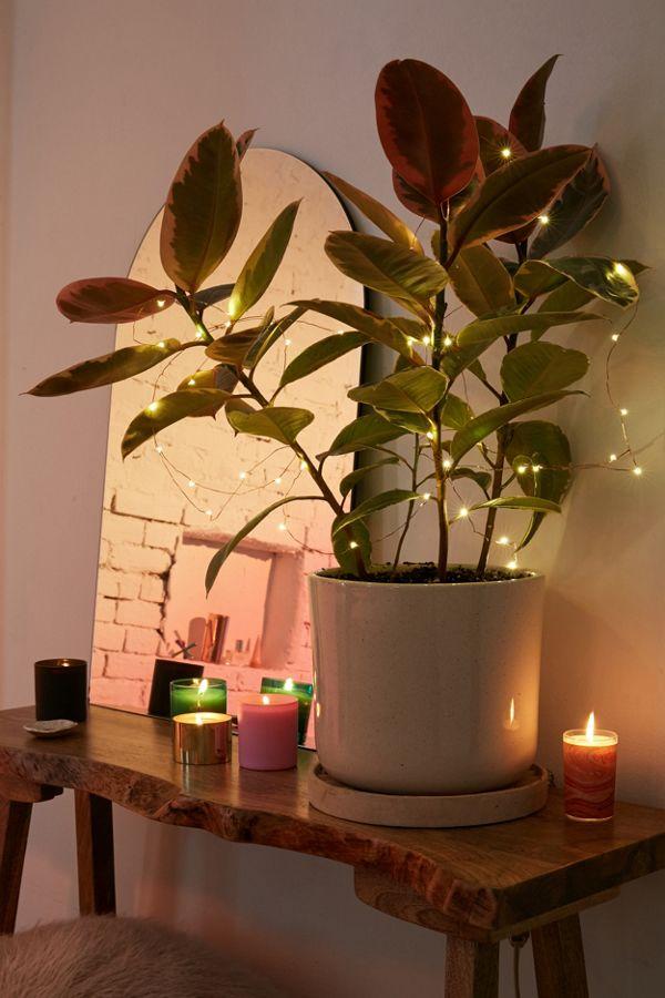 Slide View 1 Firefly Battery Ed String Lights