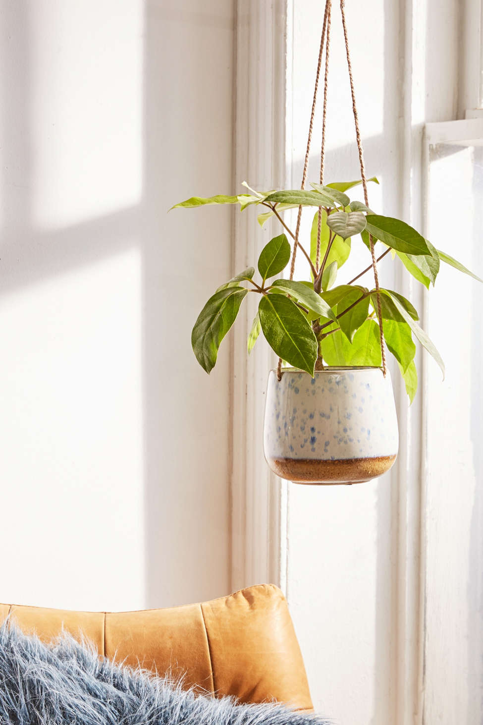 Speckled Ceramic Hanging Planter Urban Outfitters