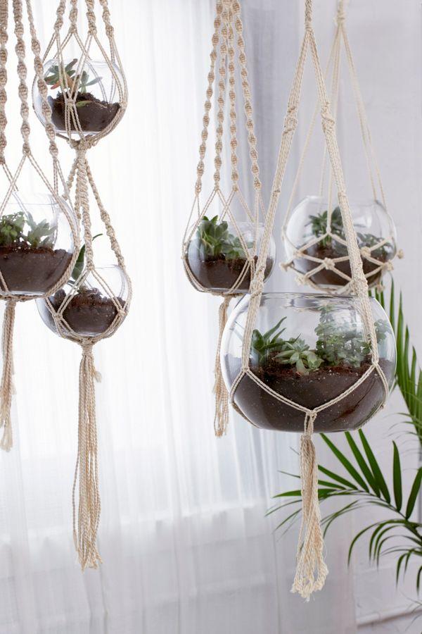 Slide View: 1: Hanging Macramé Terrarium - Set Of 5