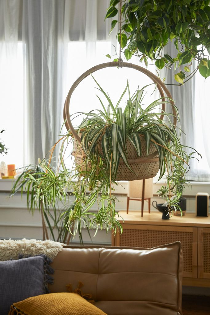 Margot 7 Hanging Planter Urban Outfitters
