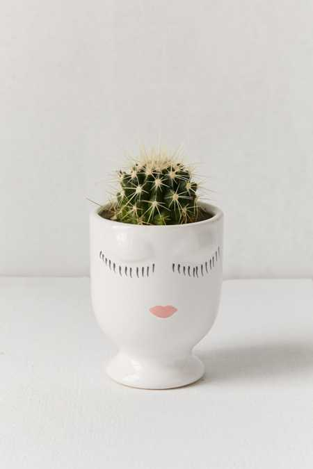 Terrariums Indoor Planters Urban Outfitters Canada