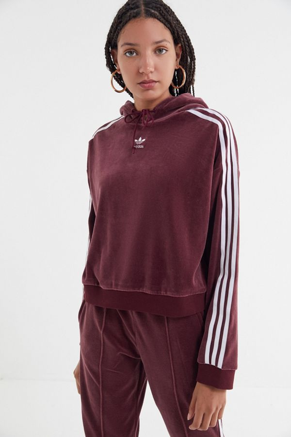 9a29a39773bed adidas Velvet Cropped Hoodie Sweatshirt | Urban Outfitters