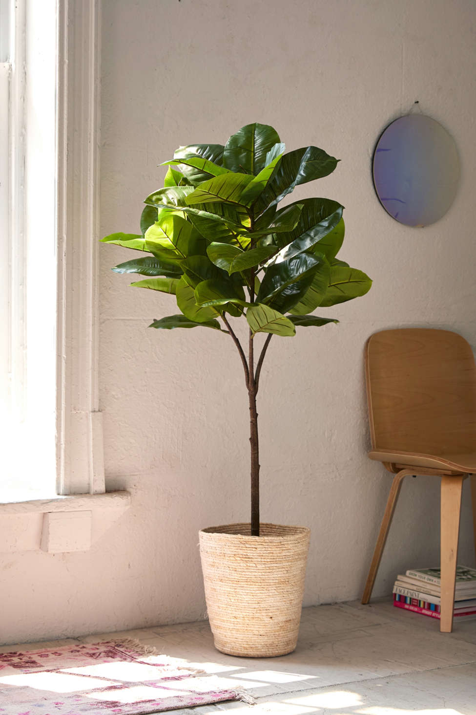 Slide View: 1: Potted Faux Rubber Tree