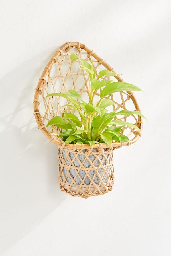 Slide View: 1: Ryland Planter Wall Basket